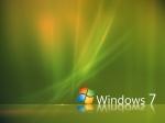 windows (11)